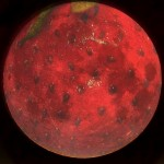 Strawberry Full Moon! (Sneak Peek into my new online Spellcraft class!)
