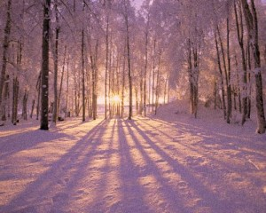 May the light of the returning sun warm the icy places within all of us.
